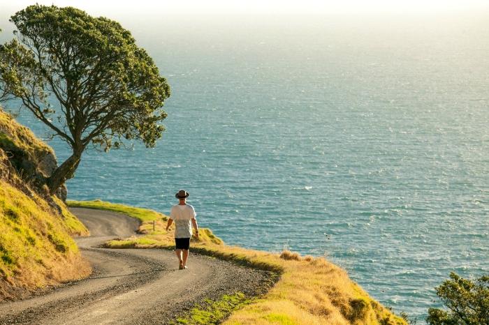 The Coromandel Coastal Walkway - pic courtesy thecoromandel.com