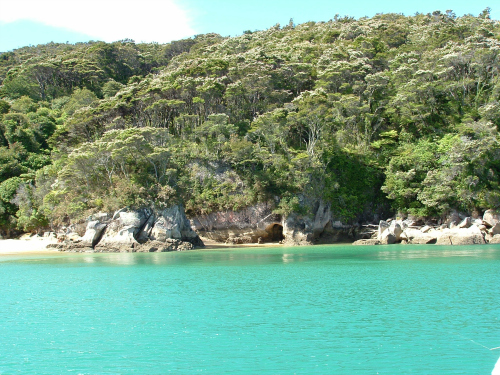 A golden beach in the Abel Tasman