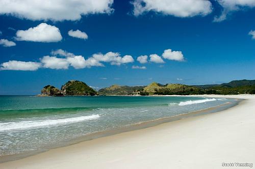 Auckland's stunning Kaitoke Beach, pic courtesy Scott Venning