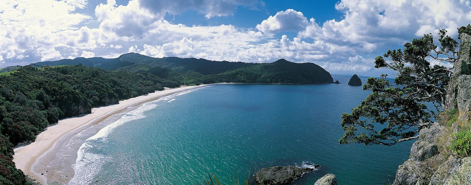 New Chum Beach, named one of the World's finest beaches. Image courtesy thecoromandel.com
