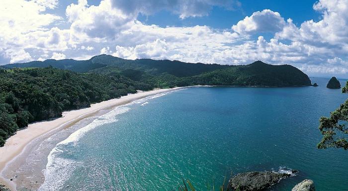 Stunning New Chum Beach in the Coromandels - pic courtesy thecoromandel.com
