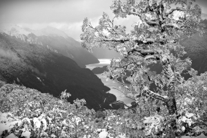 Doubtful Sound - Snow On Wilmot Pass Photographer K Townson