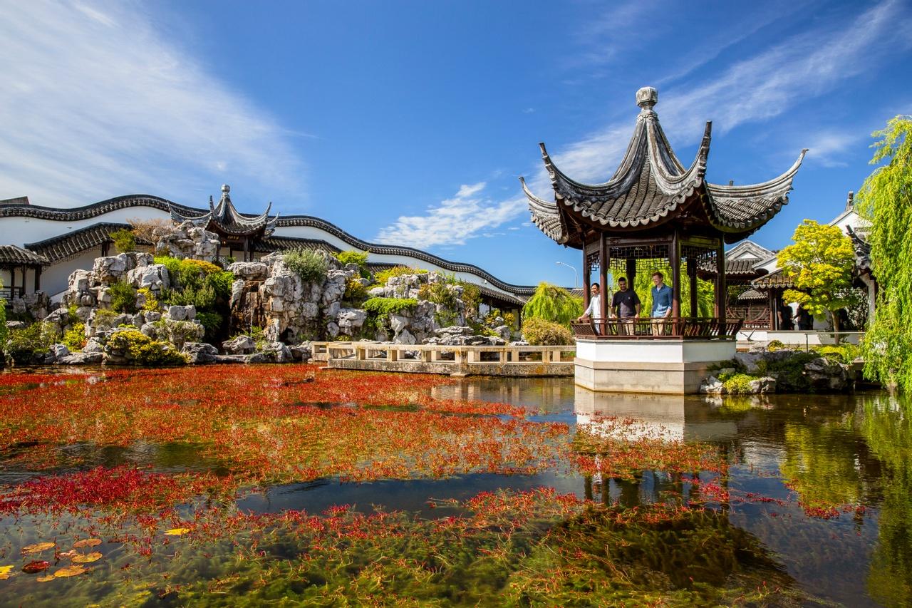 Dunedin Chinese Gardens. Image courtesy Camilla Rutherford and DunedinNZ