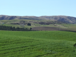 Green hills near Fairlie