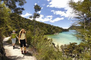 Hiking in the beautiful Abel Tasman National Park