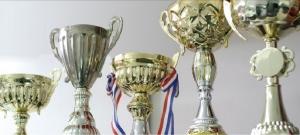 Some of Huka's many awards