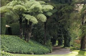 Huka Lodge garden