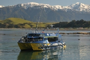 A beautiful spot - a Whalewatch Kaikoura boat in South Bay Kaikoura