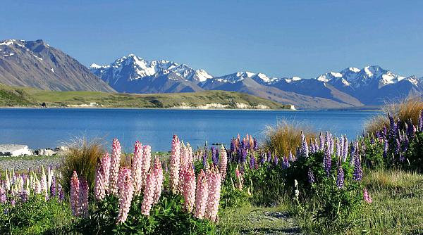 Kirra Tours Lake Tekapo