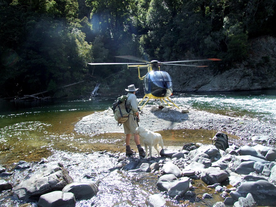 Fishing near Lake Taupo Lodge - we thank Lake Taupo Lodge for use of this image