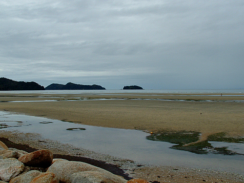 Low tide at Marahau near the Abel Tasman National Park