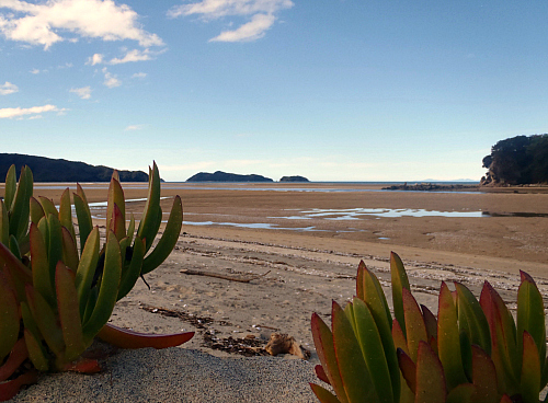 Low tide at Marahau in the Abel Tasman