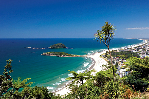 Great coastal views from the summit of Mt Maunganui - pic courtesy Chris McLennan