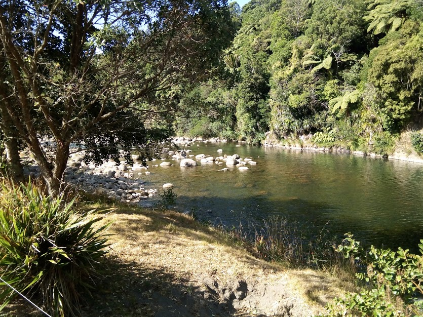 River bank at One Burgess Hill New Plymouth