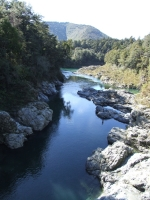 The gorge at Pelorus Bridge