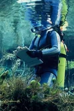 A diver in the crystal clear waters of Pu Pu Springs