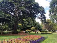 Queenstown Gardens Courtesy queenstownnz.co.nz