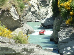 Thrills on the Shotover Jet in Queenstown