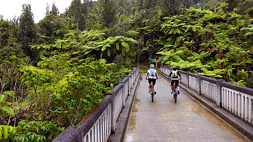 Cycling over the Bridge To Nowhere - pic courtesy Visitruapehu.com