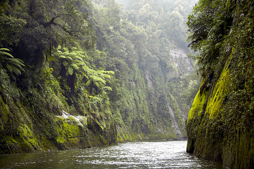 The Whanganui River - picture courtesy visitruapehu.co.nz