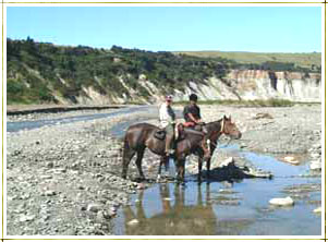 Horse trekking near Sherwood Lodge