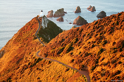 Nugget Point, Southland pic courtesy Venture Southland