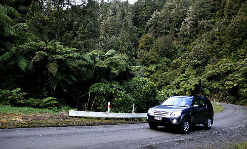 Tangarakau Gorge on the Forgotten World Highway - pic courtesy Rob Tucker
