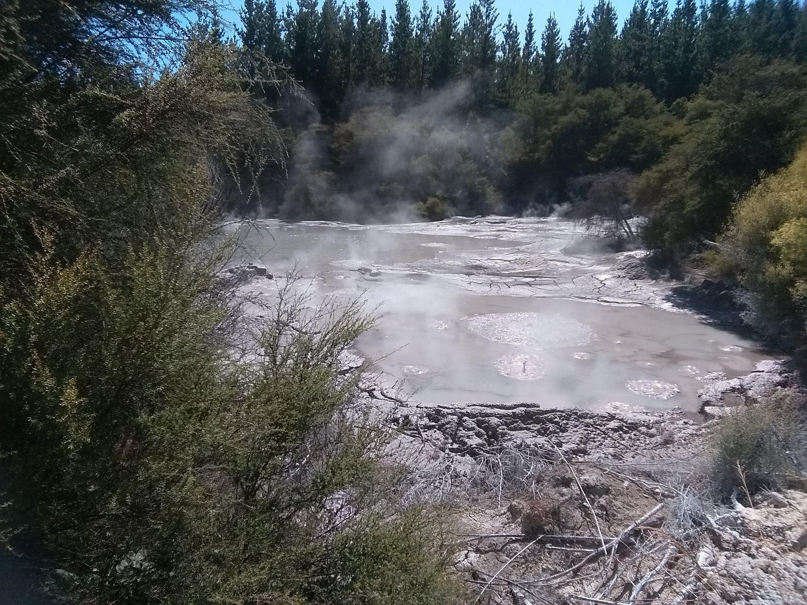 Bubbling mud pools at Wai-O-Tapu