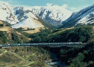 The Tranzalpine weaves its way through the Southern Alps, an experience not to be missed.