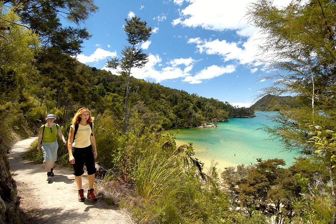 Tramping on the Kayak and Walk tour in the Abel Tasman National Park - pics courtesy Viator