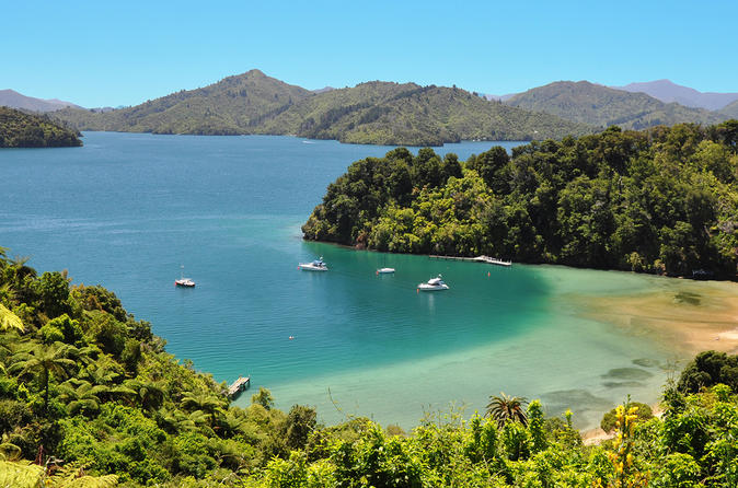 Stunning views from the Queen Charlotte Track