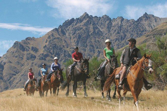 Walter Peak Half Day Horse Trek