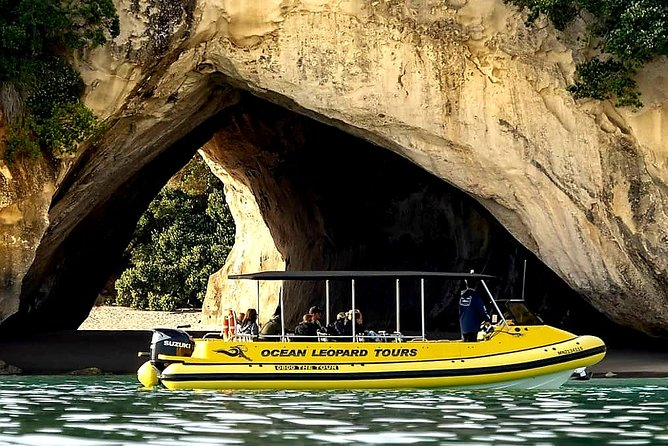 Visit Cathedral Cove on an Ocean Leopard tour. Highly recommended.