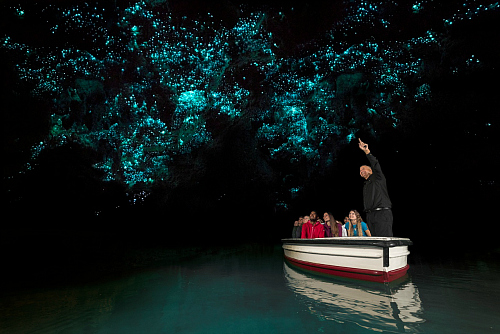 Stunning Waitomo Glowworm Caves - pic courtesy Corin Walker Bain