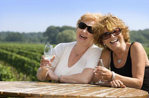 Relax with friends on a Wanaka wine tour
