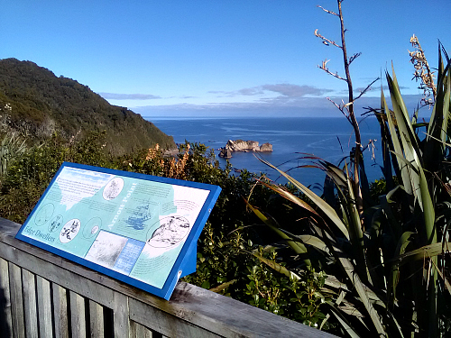 Knight's Point lookout, north of Haast