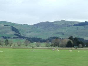 Rolling hills North of Christchurch