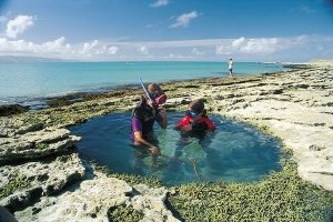 Kids exploring a rock pool near Gisborne