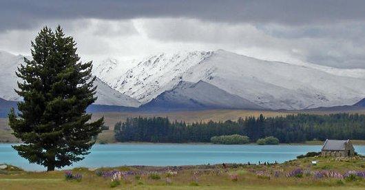 Lake Tekapo picture