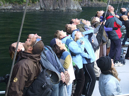 People admiring the steep cliffs at Milford Sound - pic courtesy Sue Lovell