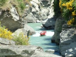 Thrills on the Shotover Jet Queenstown