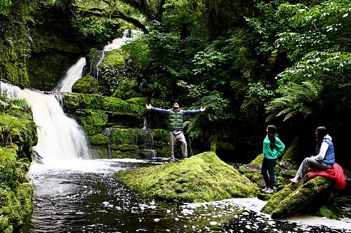 Stunning McLean Falls in the Catlins, Southland