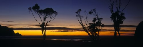 Sunrise in the Catlins in Southland New Zealand - picture courtesy Venture Southlan