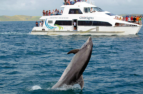 Come and see the Bay of Islands on the original Cream Trip