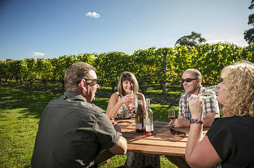 What a great day, relaxing in the Martinborough vinyards.