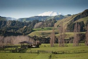Whanganui Green Hills And Snow Courtesy wanganui.com